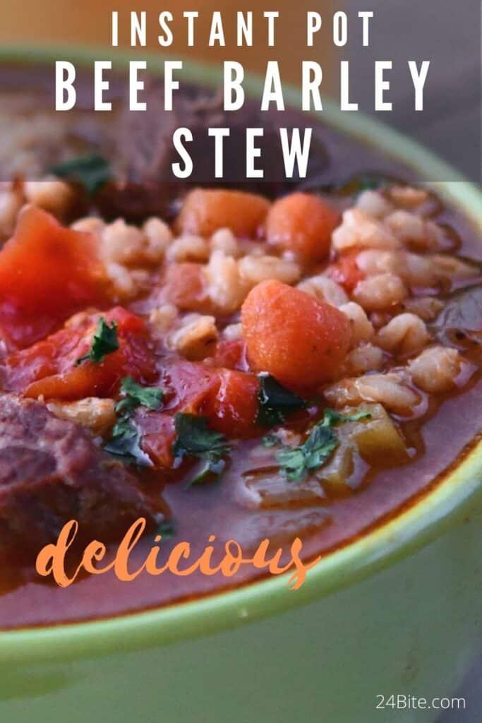 24Bite: Instant Pot Hearty Beef Barley Stew Recipe by Christian Guzman