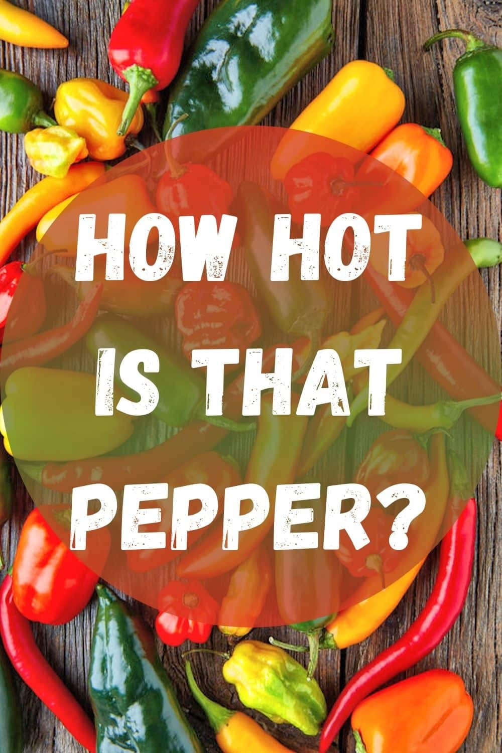 "Graphic image with text ""How Hot is That Pepper?"" for pinterest"