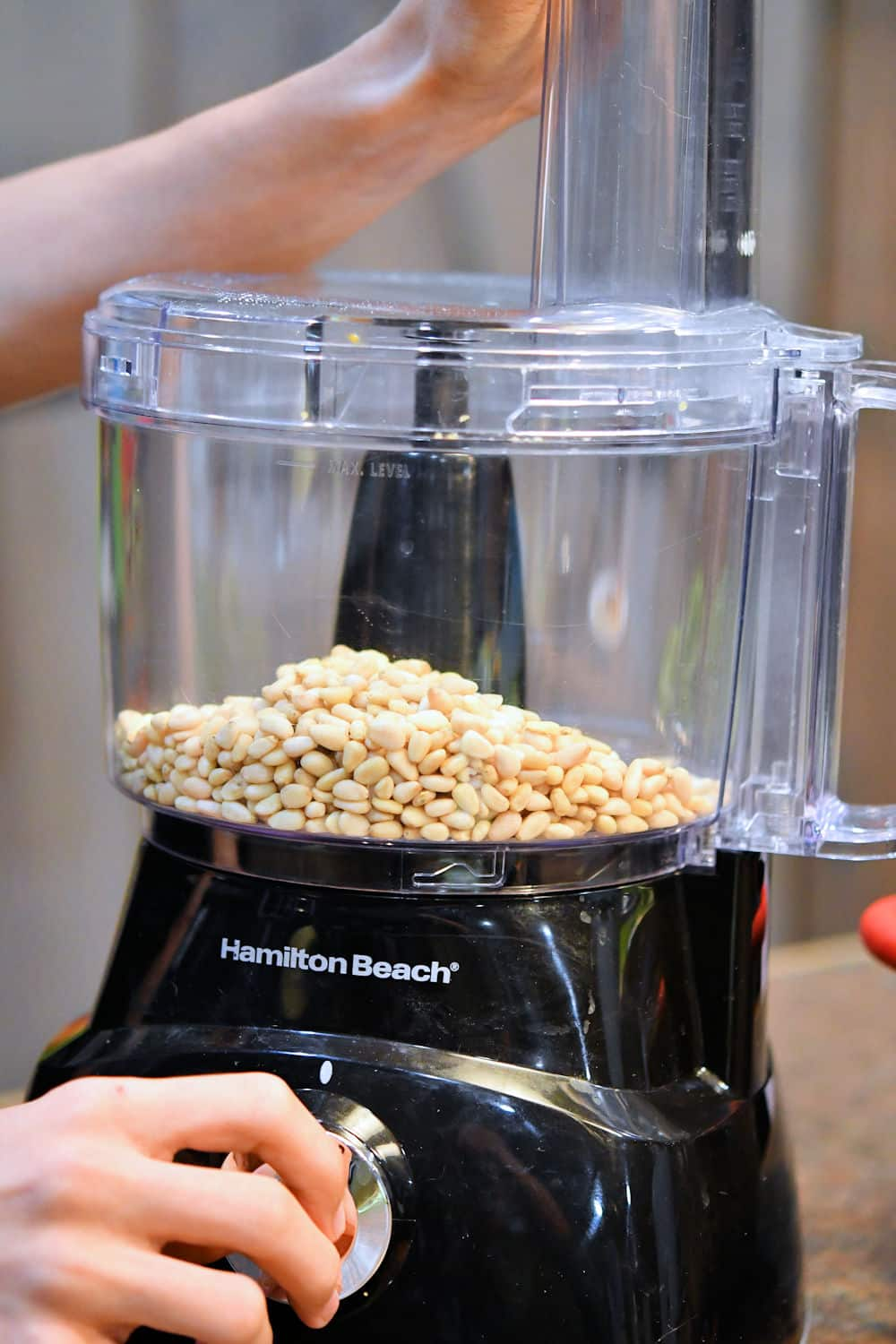 Processing pine nuts in food processor