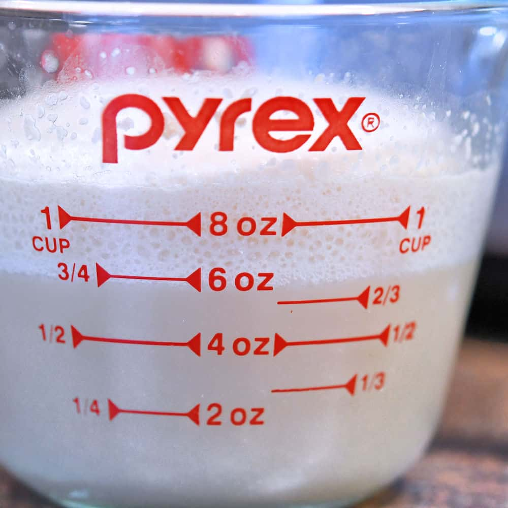 proofed yeast with a nice foam top in a glass measuring cup