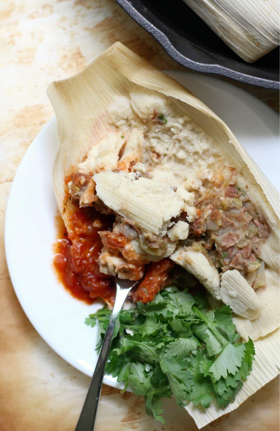 pinto bean tamales on a white plate with red sauce and cilantro leaves